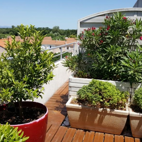 Appartement NARBONNE (11100) 41.00m2 128 000 €