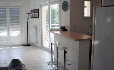 Appartement TROYES (10000) 85 m2 695 €